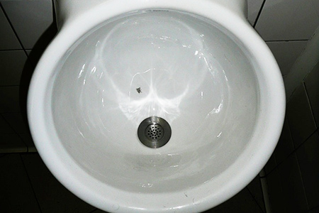Urinal flies at Schiphol airport, Amsterdam